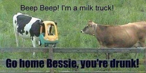 COW I'm a milk truck