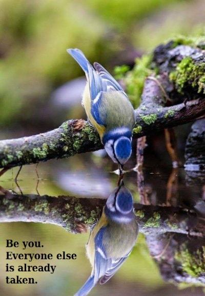 2019_11 12 Be you