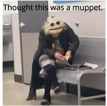 2019_11 13 Muppet LOL