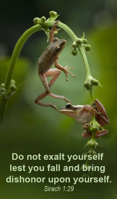 2019_12 09 Do not exalt yourself