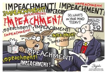 2020_01 27 impeachment tds toon