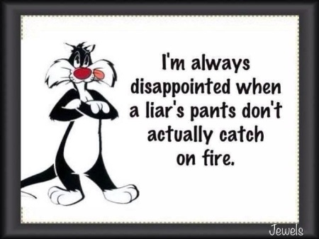 2020_01 27 Liar's pants