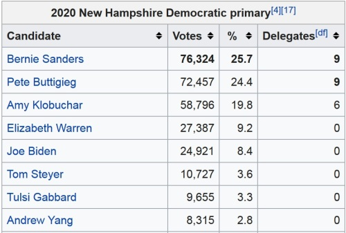 2020 NH primary results