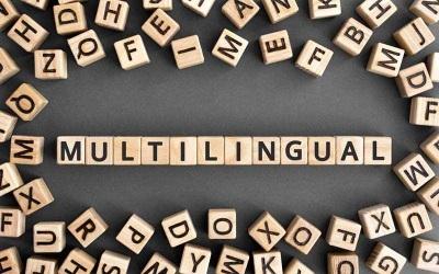 2020_02 21 multilingual