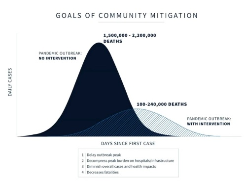 2020_04 01 goals of mitigation