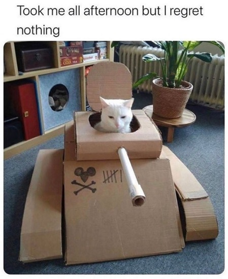 2020_04 02 cat tank