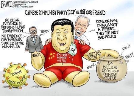 2020_04 23 china flu