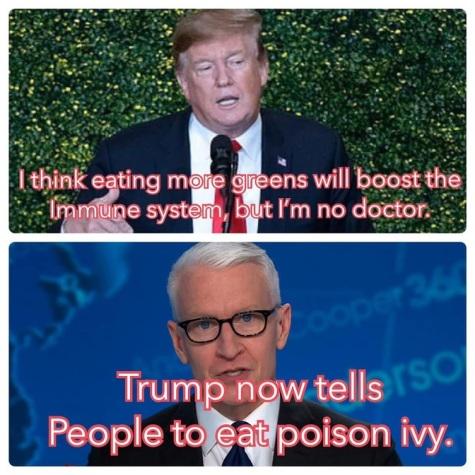 2020_04 27 CNN greens