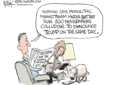 2020_05 03 MEDIA collusion