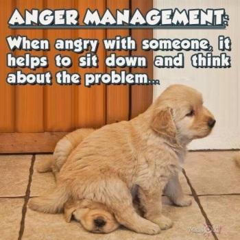 2020_05 06 anger management