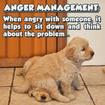 2020_05 06 anger management