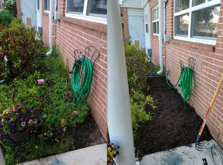 2020_05 10 Max's before after