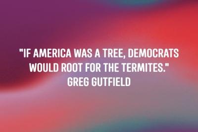 2020_06 04 Democrats termites