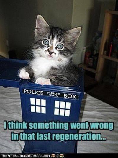 2020_06 10 tardis kitty