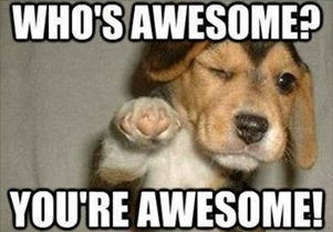 2020_07 20 DOG You're awesome