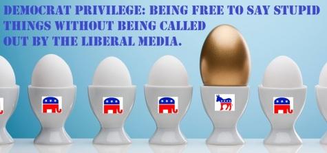 2020_08 07 Democrat Privilege