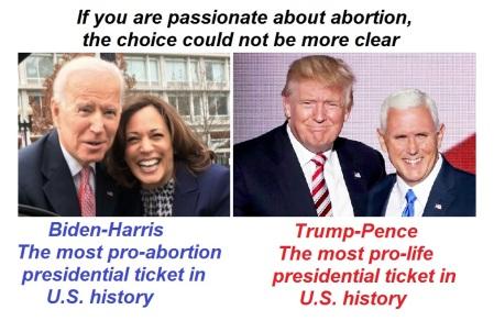 2020_08 14 Abortion 2020
